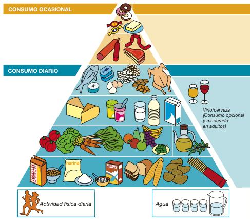 La nueva propuesta de piramide de la SENC